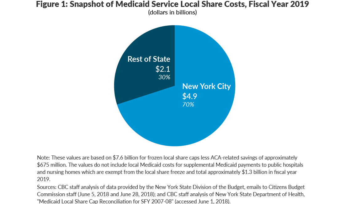 Figure 1: Snapshot of Medicaid Service Local Share Costs, Fiscal Year 2019